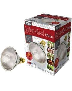 Intelec Clear PAR38 Hard Glass Infra-Red Bulb - 175 Watt