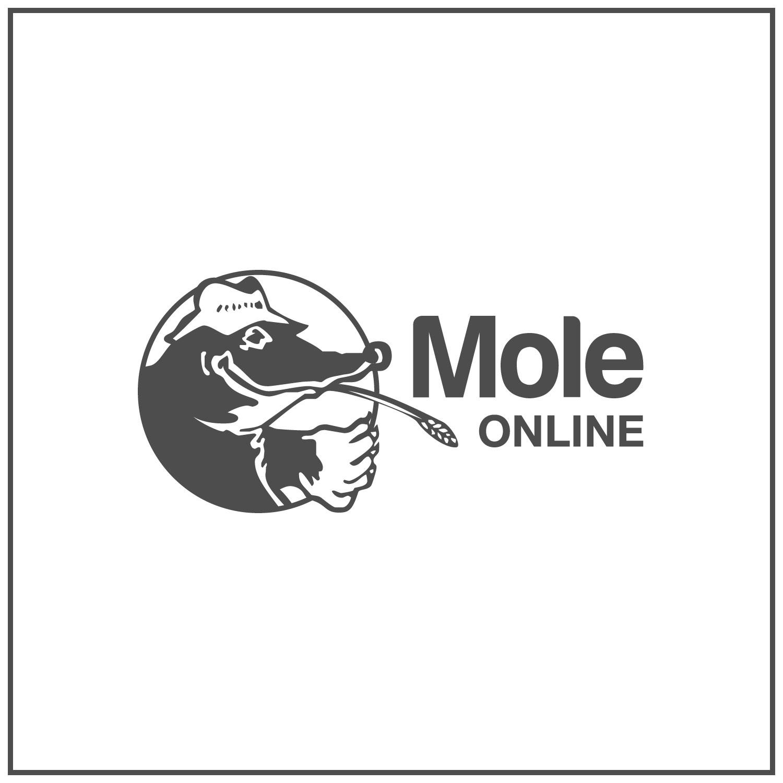 MVF MoleMark Marker Spray Blue - 400ml
