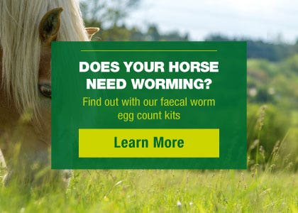 Horse worming