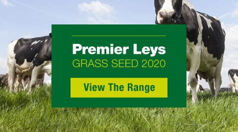 premier leys grass seed
